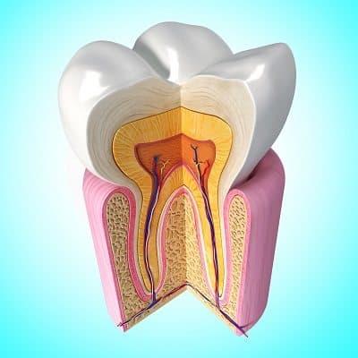 זירוז הריפוי בהשתלות שיניים